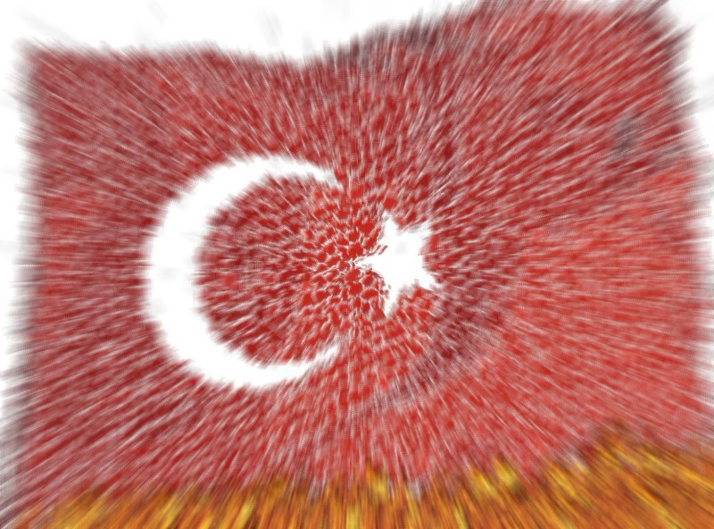 turkey-in-danger