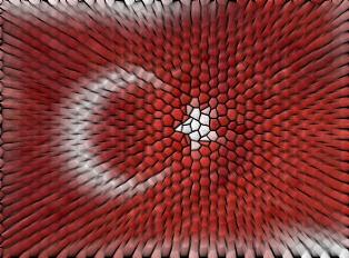 turkey_psifidwto