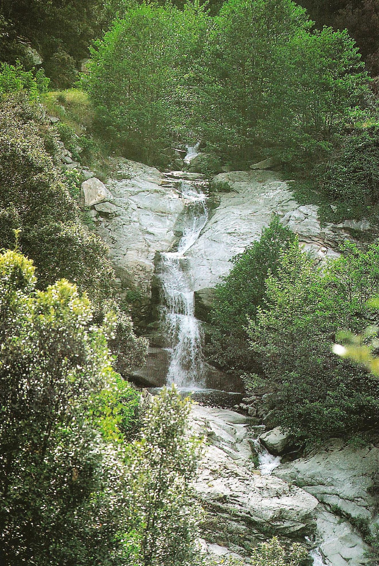 Στο δάσος της Μονής. The monastery forest.
