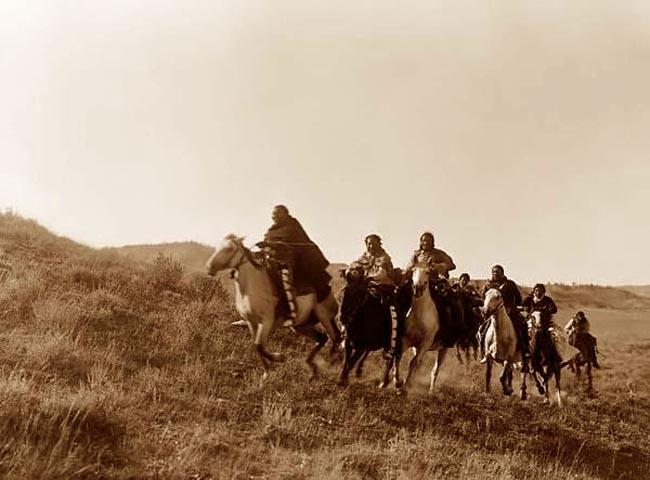indians horses