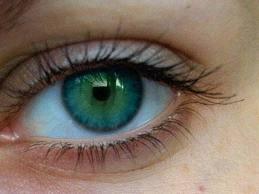 012d006c9c Το γλαύκωµα είναι μια ομάδα παθήσεων των ματιών