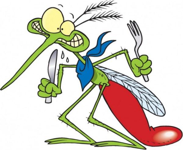 mosquito-630x519