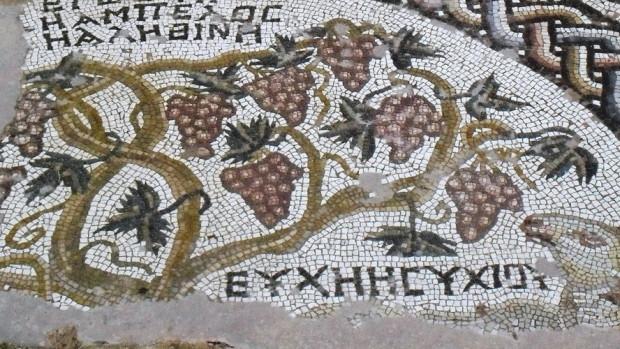 Ψηφιδωτό δάπεδο. Κύπρος, Πάφος, Ναός Χρυσοπολίτισσας, Αναπαράσταση άμπελου. (©Φωτογραφικό Αρχείο ΕΚΒΜΜ)