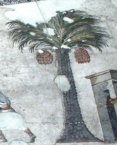 Ψηφιδωτό δάπεδο. Τουρκία, Κωνσταντινούπολη, Μουσείο Ψηφιδωτών, Αναπαράσταση χουρμάδων. (©Φωτογραφικό Αρχείο ΕΚΒΜΜ)