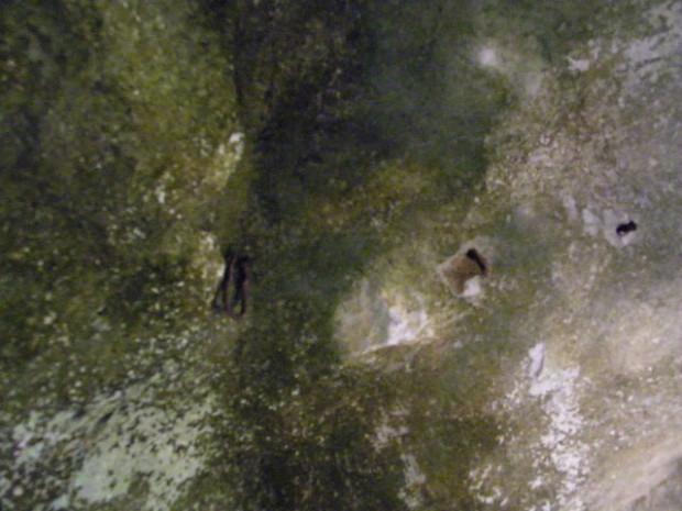 Ψηλά στον βράχο της σπηλιάς, διακρίνουμε κρίκους όπου κρεμόταν με σκοινί για τις πολύωρες αγρυπνίες