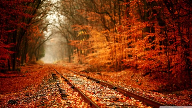 autumn_railway-wallpaper-1280x720