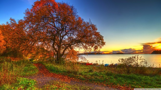 autumn_scenery_2-wallpaper-1280x720