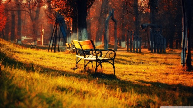 autumn_walk_in_the_park-wallpaper-1280x720