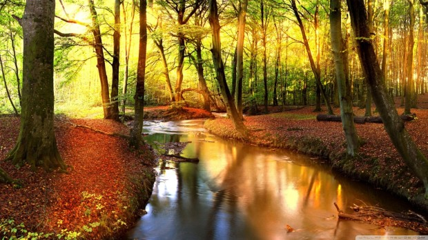 impressive_autumn_landscape-wallpaper-1280x720