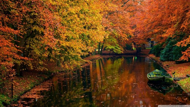 lake_in_autumn_landscape-wallpaper-1280x720