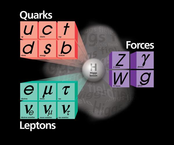 Το καθιερωμένο πρότυπο (πηγή: Wikipedia/Fermi lab)