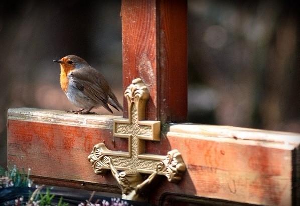 Φωτο:o-nekros.blogspot.com