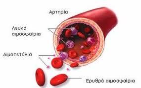 Λευκά-αιμοσφαίρια