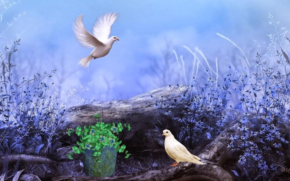 white-pigeons-nature-flowers-colors-paint-hd-wallpaper-love