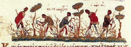 Αποτέλεσμα εικόνας για ΚΥΡΙΑΚΗ ΙΓ ΜΑΤΘΑΙΟΥ