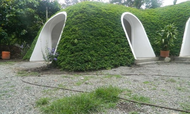 Green-Magic-Homes-14-1020x610-702x420