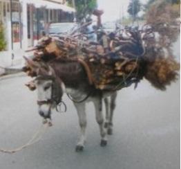 Τα ξύλα του παπά (Μία συγκλονιστική πραγματική διήγηση με κρυπτοχριστιανούς)